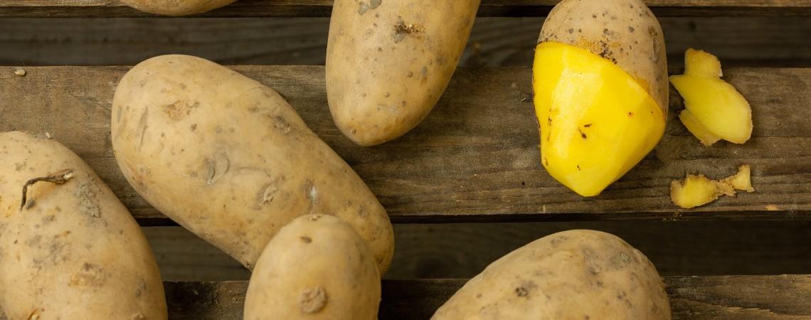 Nieuwe oogst aardappels
